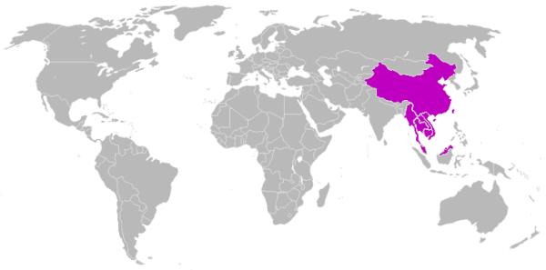 mandarin-language1