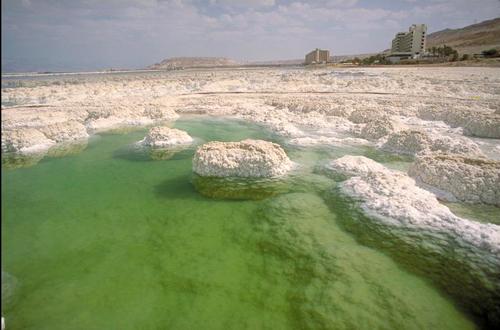 sea-salt-organic