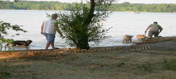 Alum Creek Dog Park, Lewis Center, OH