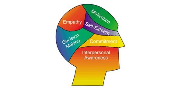 emotional intelligences adult education