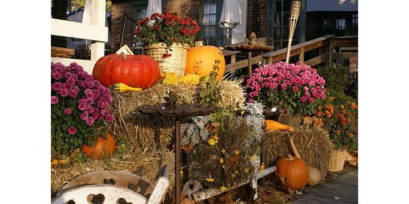 Autumn decoration house
