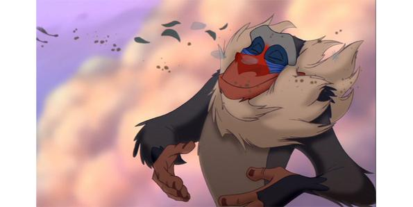 Rafiki in Lion King