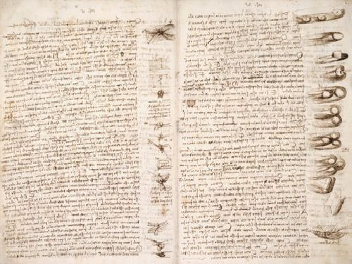 Leonardo DaVinci Manuscript