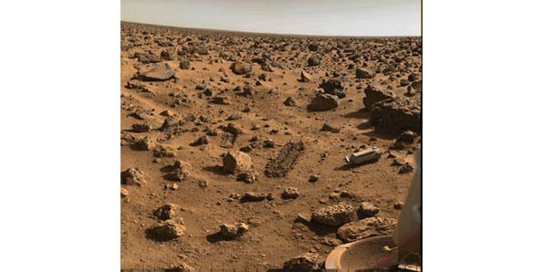 Martian pathogens