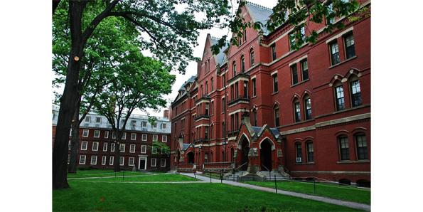 Harvard university business strategy