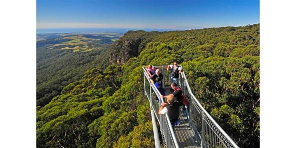 Illawarra Fly Tree Top Walk in Australia