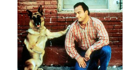 The ending to the movie K-9 happened two years later