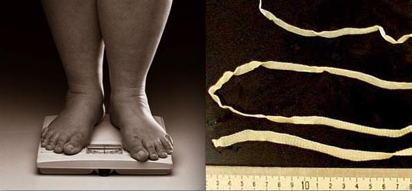 Tapeworm Diet